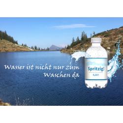 Mineralwasser spritzig 330 ml